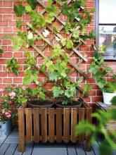 """""""Jardines, balcones y terrazas se preparan para recibir a la primavera con sus mejores galas"""""""