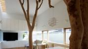 """""""decoración original con un verdadero árbol dentro de casa""""  Decoración para los apasionados por el diseño portada1 178x100"""