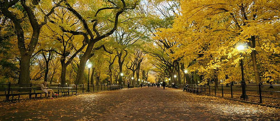 """""""El otoño es uno de los mayores espectáculos de la naturaleza y uno de los menos apreciados.""""  12 transformaciones que te muestran la belleza del otoño transformaciones en otono slide"""