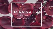 marsala Como decorar con marsala, el color de 2015 Portada Pantone Marsala 672x372 178x100