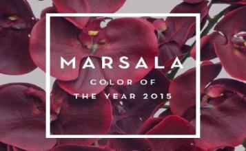 marsala Como decorar con marsala, el color de 2015 Portada Pantone Marsala 672x372 357x220